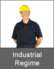 Deb Industrial Regime